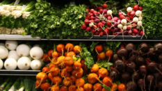 ISO 22000:2018 Gıda Güvenliği Yönetim Sistemi